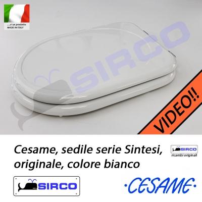 Sedile Wc Cesame Sintesi.Sedile Sintesi Bianco Originale Varianti Cesame Sintesi