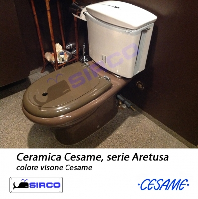 Cesame sanitari serie aretusa streaming in english with for Copriwater leroy