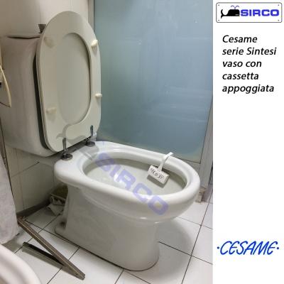 Sedile Wc Cesame Sintesi.Water Cesame Modello Aretusa Termosifoni In Ghisa Scheda Tecnica